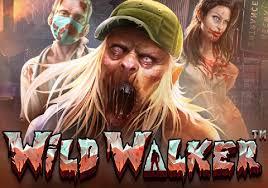 แนะนำสล็อตออนไลน์ Wild Walker