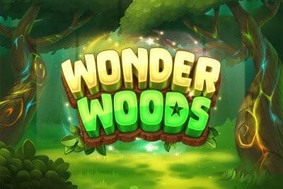 แนะนำเกมสล็อต Wonder Woods
