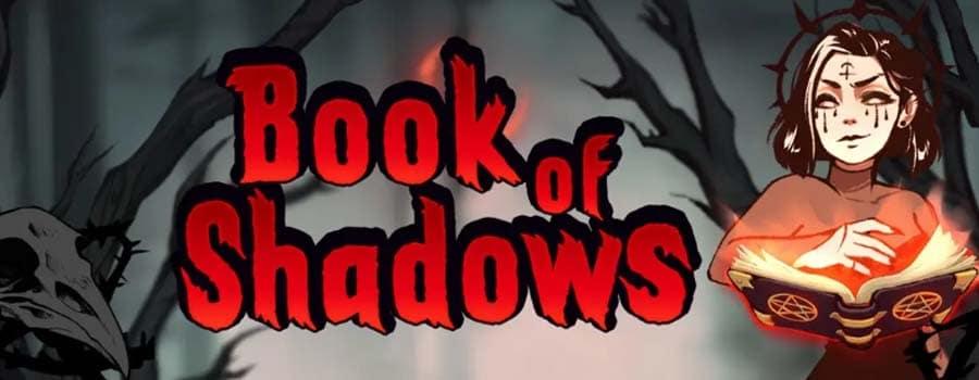 แนะนำเกมสล็อตออนไลน์ Book of shadows