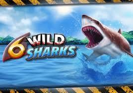แนะนำเกมสล็อตออนไลน์ 6 Wild Sharks